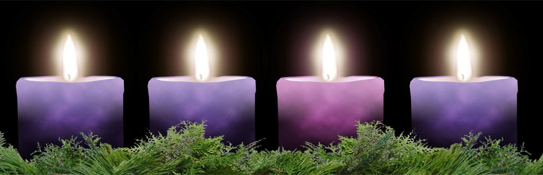 Churchwide Advent Study